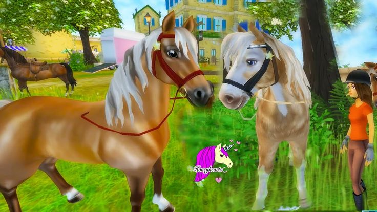 Flat Pancake? Star Stable Horses Game Let's Play with