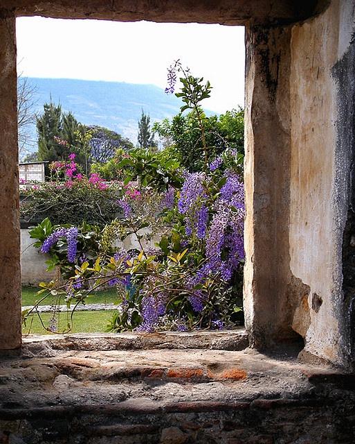 antigua-courtyard by inspired by..., via FlickrWindows What, Dreamy View, Antigua Courtyards, Antigua Guatemala Ventanas, Windows View