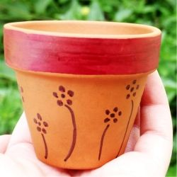 Using Sharpie, add a little jazz to a boring pot! Can also use stickers, glitter and paper! Kids can then plant a flower and give it as a gift! Super simple and easy, and a great project for kids!