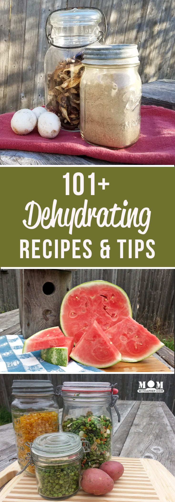 101+ Dehydrating recipes and ideas for your dehydrator - fill your food storage pantry with goodness from your backyard garden or grocery store deals and feed your family with emergency food storage.