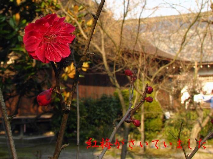 山科勧修寺