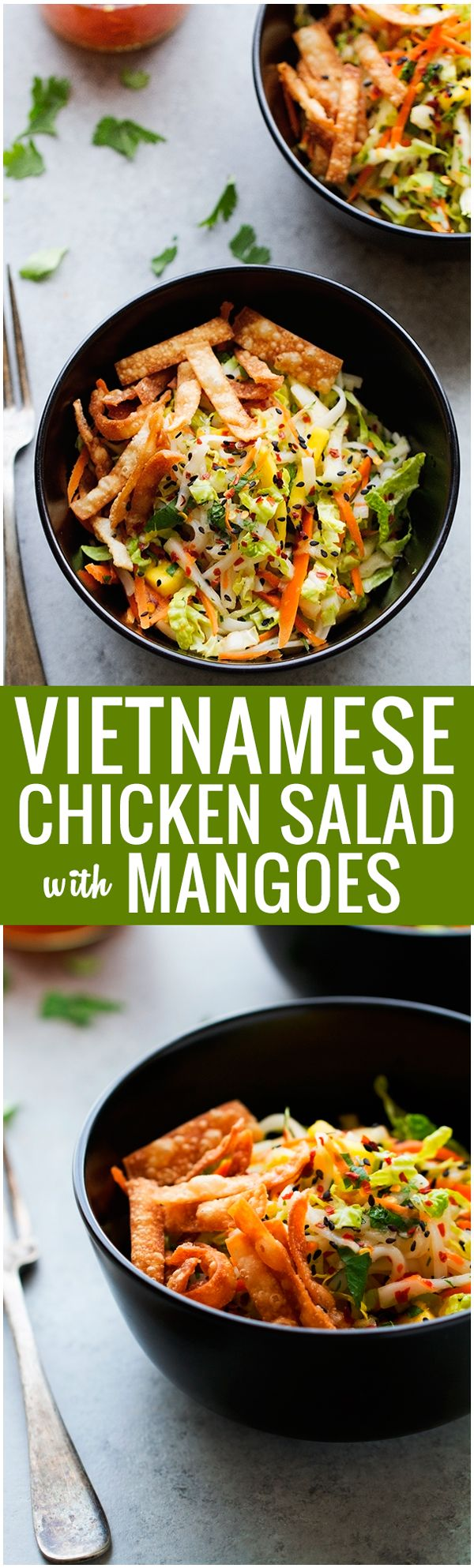 Vietnamese-Chicken-Salad-Vietnamese Chicken Salad with Mangoes - A super easy salad that is so delicious. Seriously the best! #chickensalad #vietnamesesalad #ricenoodlesalad | Littlespicejar.com