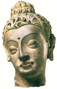 Head of the Buddha, Gandhara Style, Stucco, 5th Century.