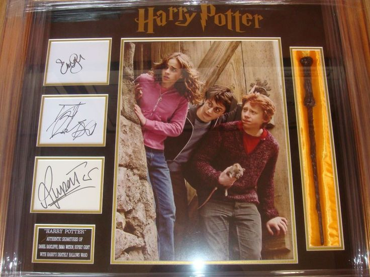 HARRY POTTER Cast SIGNED Autographs RADCLIFFE Watson GRINT Framed With COA In Collectables