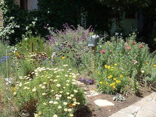 Garden Design For Large Gardens 27 best garden ideas images on pinterest | garden design ideas