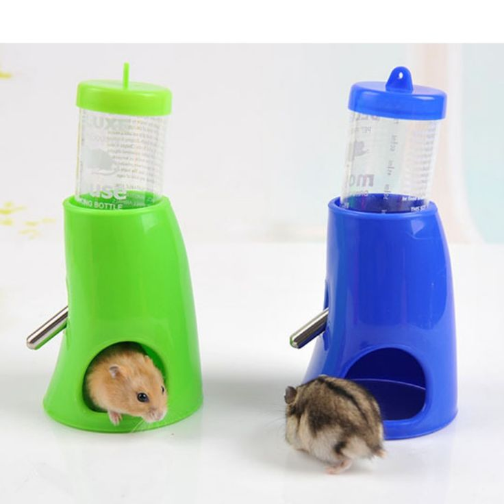 2 in 1 80ML Plastic Small Dog Puppy Nest Toy Hamster Water Bottle Holder Dispenser With Base Pet Feeder