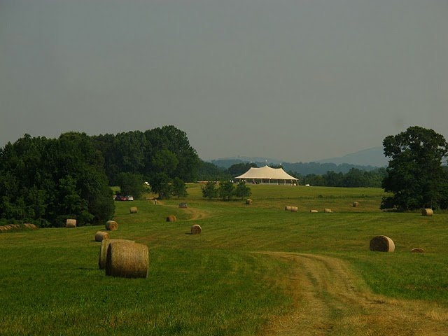 Panorama Farms, Charlottesville VA: I ran so many cross-country races here and it is gorgeous.