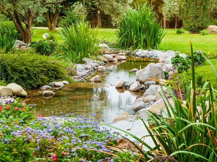 304 besten Garten \ Pflanzen Bilder auf Pinterest Garten - naturlicher bachlauf garten
