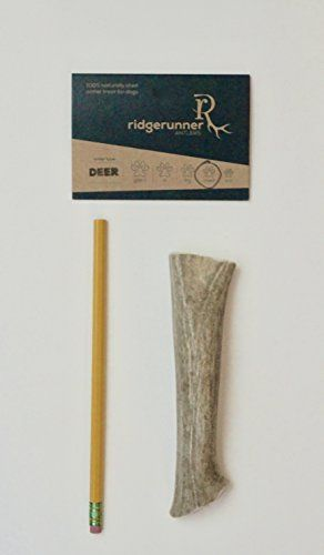 ONE 1 Medium Deer Antler for Dogs 6  8 long weighs between 25  4 ounces each Deer Antler by RidgeRunner Antlers Grade A Colorado deer antler dog chews -- You can get additional details at the image link.