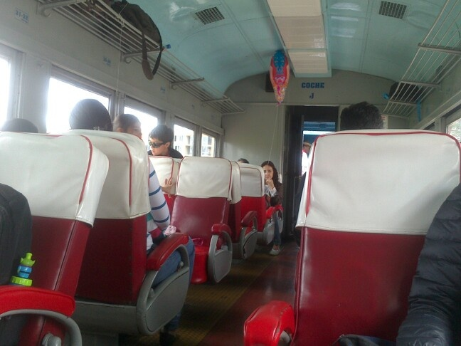 Tren De La Sabana por dentro