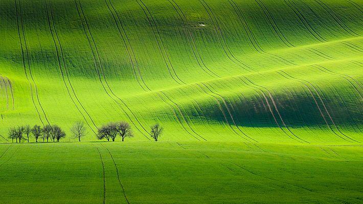 Spring is coming, South Moravian landscape near Kyjov, Czech Republic