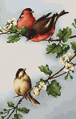 Birds on Branch Cross Stitch Kit By Luca S
