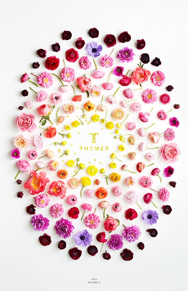 Flower art by Ann Merrill