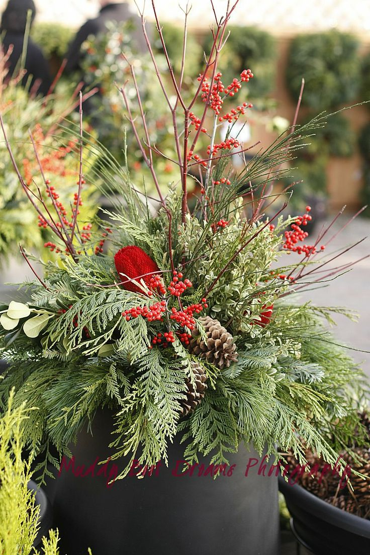 Evergreen And Berries Christmas Planter Winter Holiday