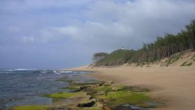 Spiagge e immersioni da sogno in Sudafrica: Sodwana Bay  #southafrica #diving #intotheblue #beachlife #beach  #southafrica #diving #intotheblue