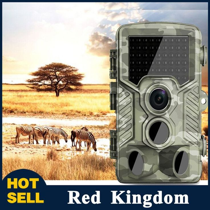 High Quality Wildlife Camera Trail Camera 940nm Black Led Invisible Animal Trap 1080P Hunting Camera Free Shipping