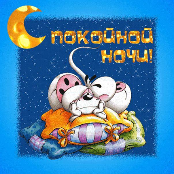 Прикольные картинки, смешные прикольные гифки спокойной ночи сладких снов