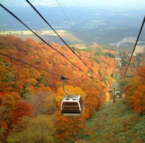 秋の紅葉を眺めるロープウェイ。