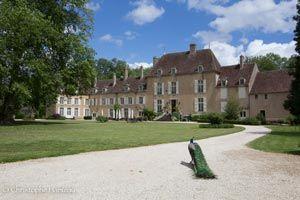 Le Château de Vault de Lugny-small