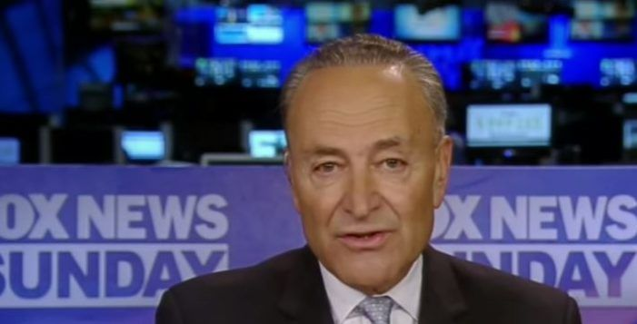 Chuck Schumer Obliterates Fox News's Attempt To Blame Democrats For Trump's Failures