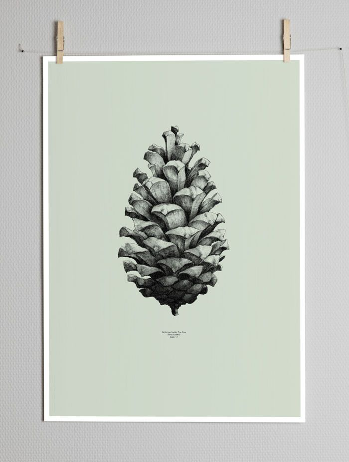 Image of NATURE 1:1 PINE CONE BY FORM US WITH LOVE (GREEN)