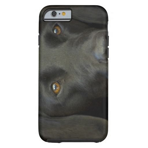 Svart Labrador hund iPhone 6 Case