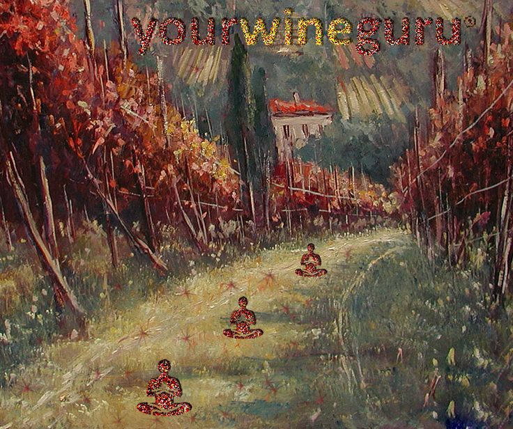 www.yourwineguru.it - l'arte del vino