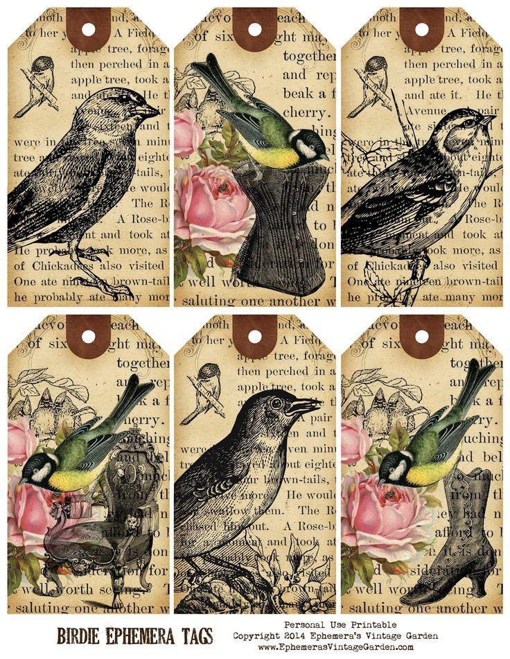 Ephemera's Vintage Garden: Weekly Free Printable - Bird Ephemera Tags