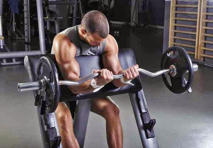 Ο σωστός δρόμος για να αυξήσετε τους μυς σας και να αποκτήσετε όγκο | Total Fitness