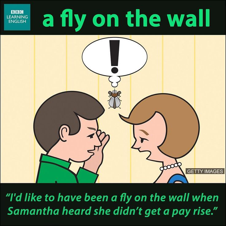 This is an expression used particularly in connection with documentaries or reality shows. A 'fly-on-the-wall documentary' is the kind of programme in which the cameras are not very visible or noticeable, and they record the action without interfering.    Do you watch reality shows? Do you like fly-on-the-wall documentaries?  (To be 'a fly on the wall' means to observe a situation closely without being noticed.) More idioms and phrases here…