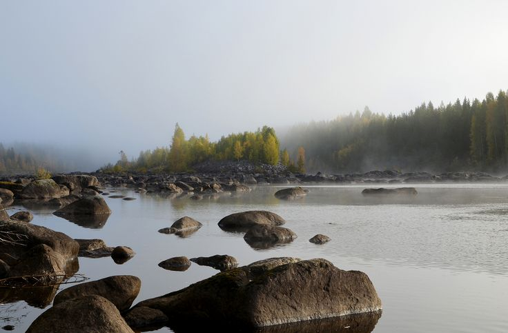 Stones in water and a little Island in fog from the Northern Sweden.