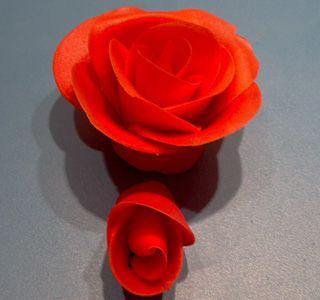 Cacas - Vi lager roser