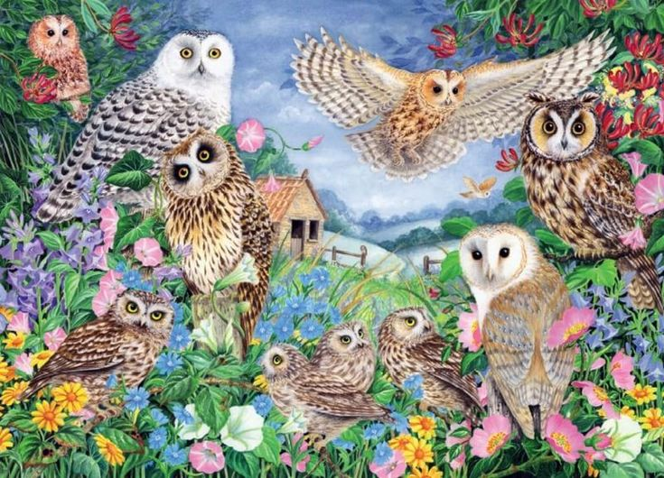 Owls in the Wood 1000 Pieces Yorkshire Jigsaw Store in