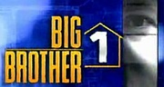 Big Brother 1 (Big Brother 2000)  - Like many other shows, this one is no longer any good, in my opinion.  I think I enjoyed it for the first 3-4 seasons, and after that, BLAH!