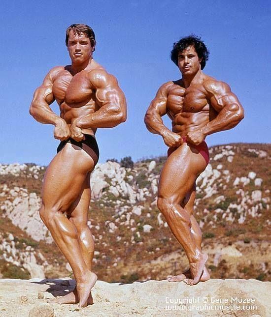178 best images about Franco Columbu - Bodybuilder on