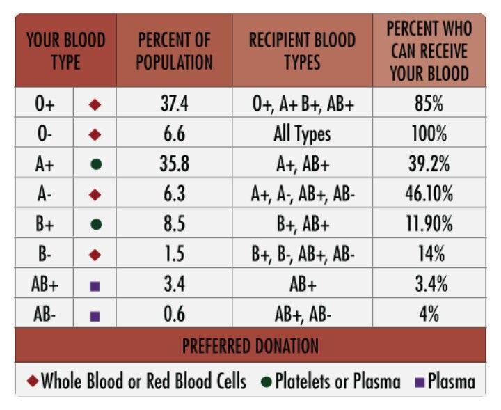 b negative blood type diet pdf