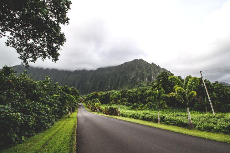 Hoomaluhia Botanical Garden #hawaii #oahu