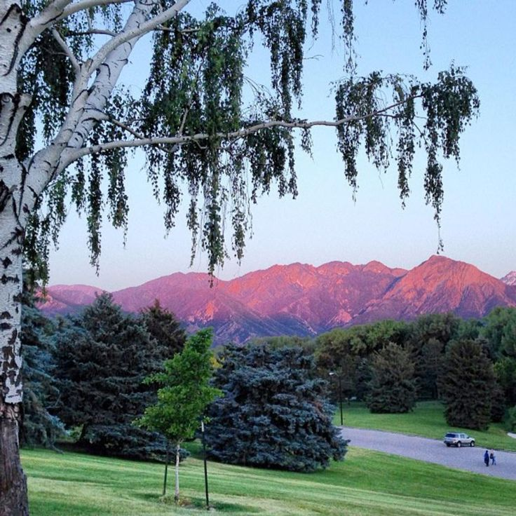 ~ Purple Mountain Majesty ~ Sugar House Park, Salt Lake City, Utah....