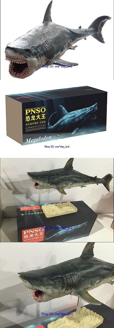 Animals and Dinosaurs 175692: Rare Megalodon Prehistoric Sharks Dinosaurs Model Toy Figure Pnso New In Box -> BUY IT NOW ONLY: $37.99 on eBay!