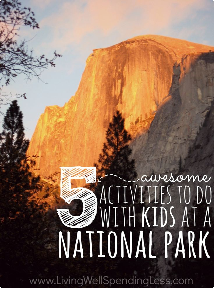 National Parks are a great way to spend time together as a family, fit in some exercise, and explore the country's natural beauty. Here are 5 activities that your kids will love when you visit your next national park!