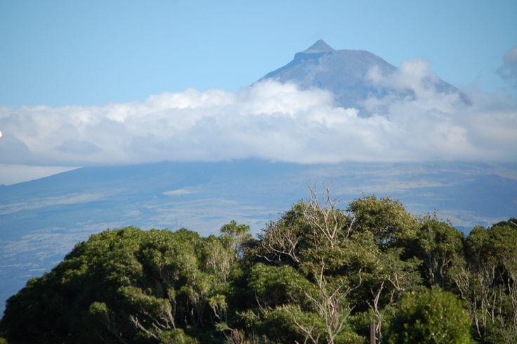 Faial / Azores / view to pico