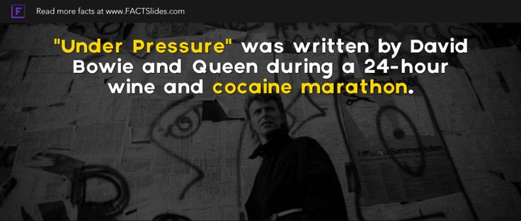 """""""Under Pressure"""" was written by David Bowie and Queen during a 24-hour wine and cocaine marathon."""