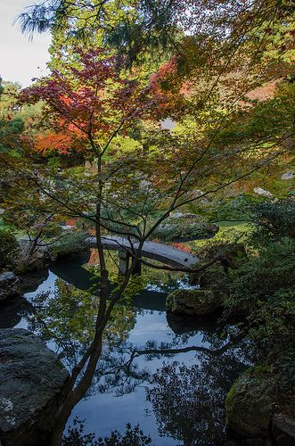 The Red leaves of Shoren-in, Kyoto / 青蓮院の紅葉(京都)