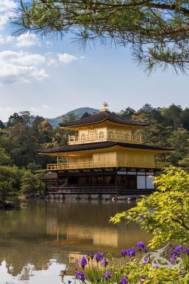 Japan / Tag 10 / Kyoto / Goldene Aussichten