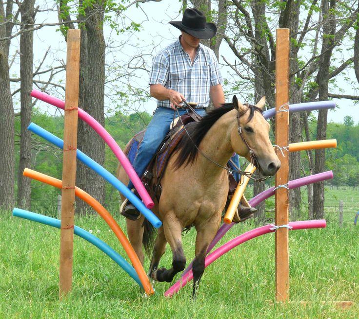 DIY Horse training aid (pool noodles)