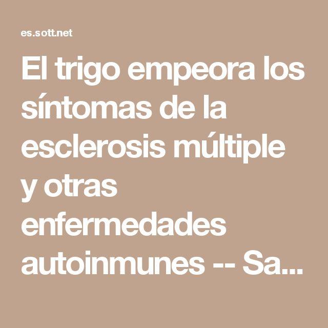 El trigo empeora los síntomas de la esclerosis múltiple y otras enfermedades autoinmunes -- Salud y Bienestar -- Sott.net