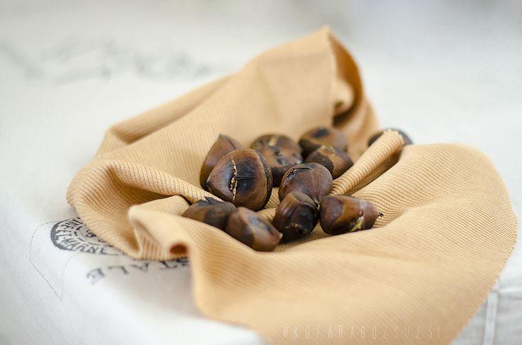roasted chestnuts by kofaragozsuzsiphotos