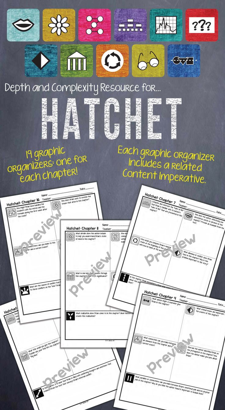 A Depth and Complexity graphic organizer for each chapter of Hatchet!