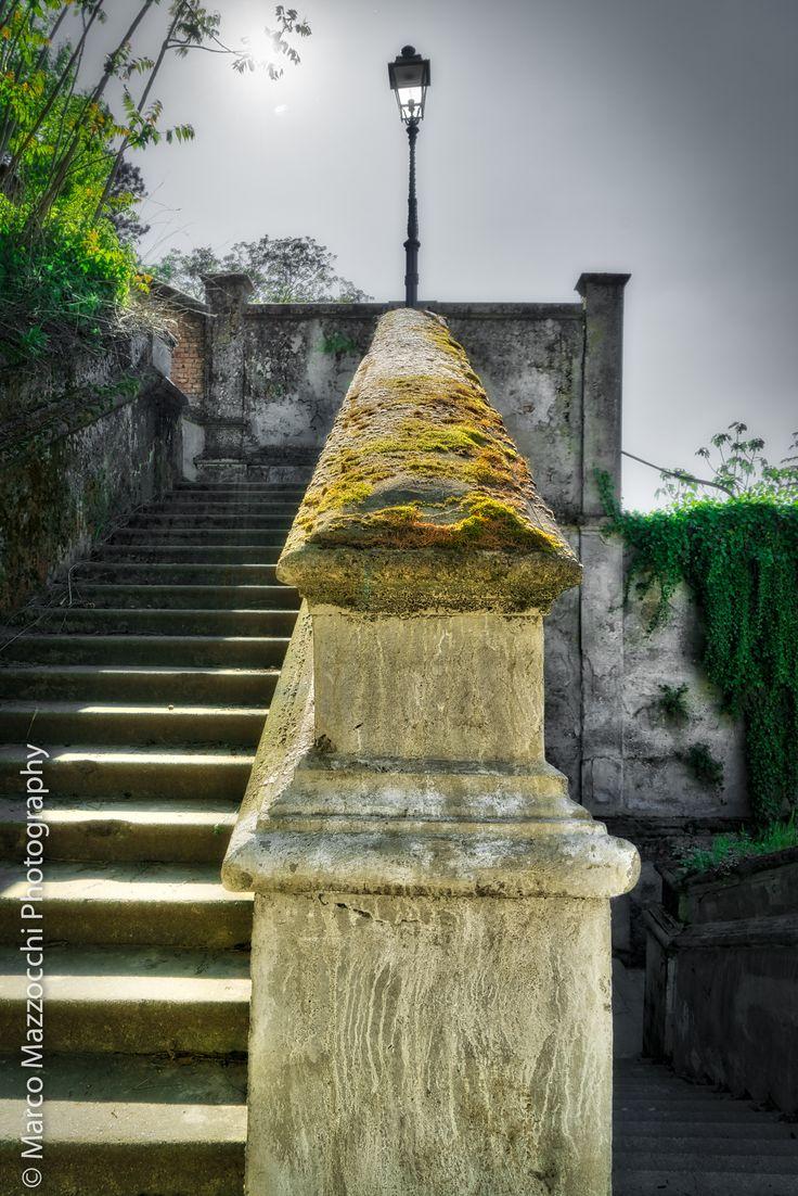 Novi Ligure - Il Castello - detail