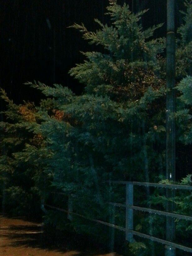 Neon lights and rain by Italia Multimedia & Laboratori Creativi Beretta